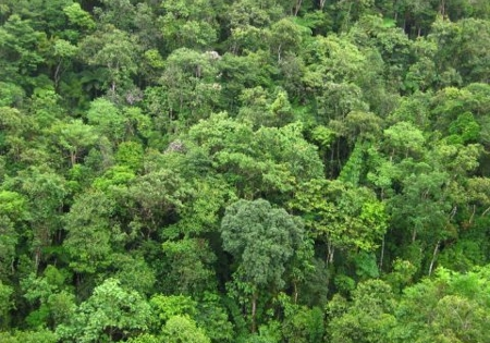 cadastro-ambiental-rural-inscrições 2019