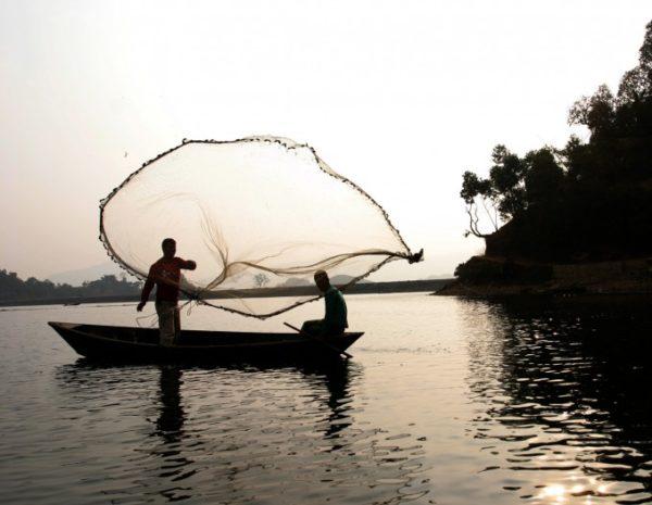 certificado-de-pescador-emissão-600x465