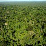 prazo-para-cadastro-ambiental-rural-150x150 2019